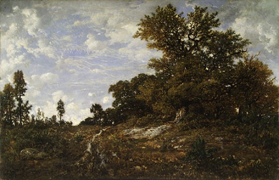 Pierre-Étienne-Théodore Rousseau, The Edge of the Woods